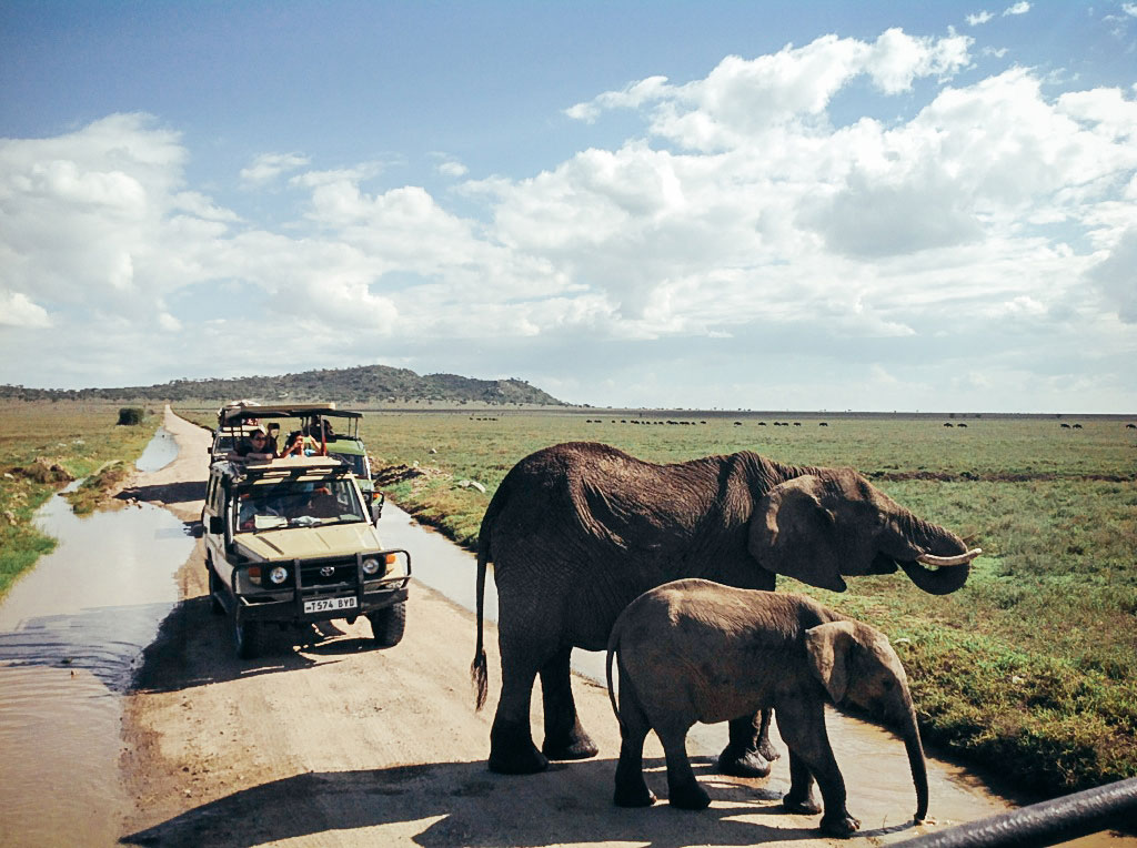 Safari vehicle encounters elephants in Kenya.