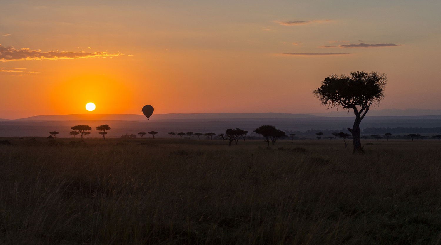 Maasai Mara landscape during sunrise with hot air balloon in the distance
