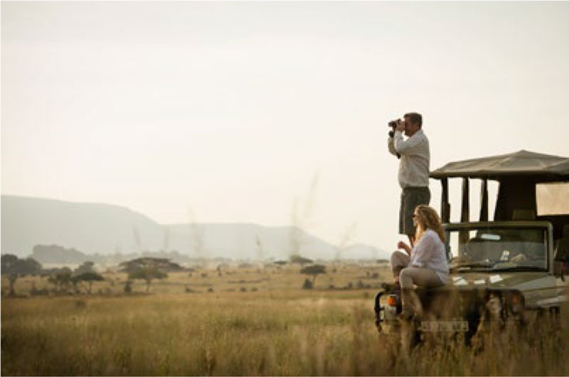 Game drive in the heart of the Serengeti
