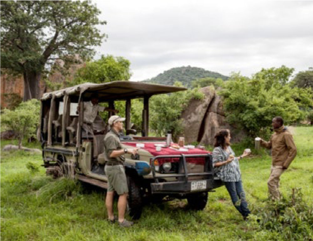 Picnic during a game drive at Ruaha National Park