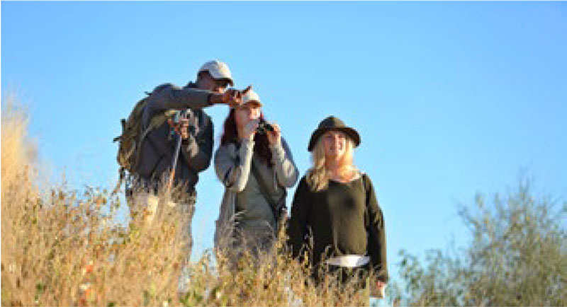 Sightseeing in Ruaha National Park