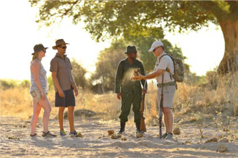 Walking with guide at Ruaha National Park